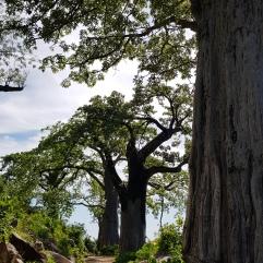 Wanderung auf Likoma Island