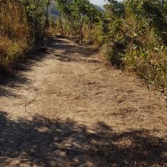 Wanderung bei Chilomoni (Blantyre)